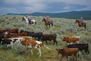 featured image for Ranches around the U.S.